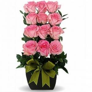 Escalonado Con 12 Rosas Rosadas