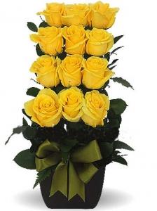 Escalonado Con 12 Rosas Amarillas