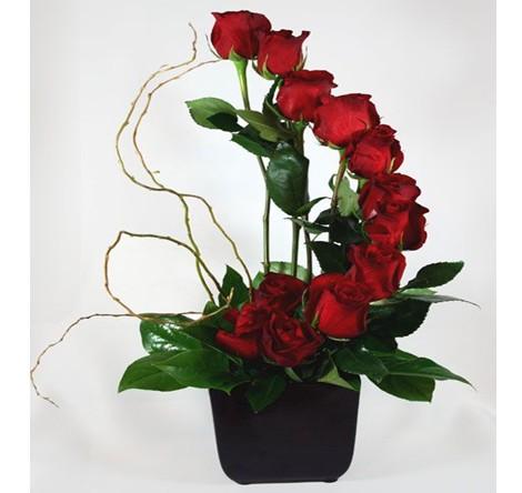 Espiral Con 12 Rosas Rojas En Base Cubo