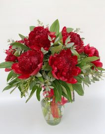 Exoticas flores peonies red 3