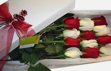 HOME_flores-en-caja